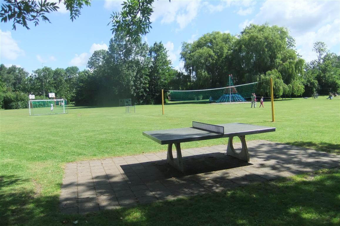 Spiel- und Sportwiese